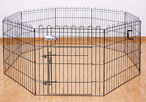 PCMAXで出会った人妻が飼っている犬を柵の中へ
