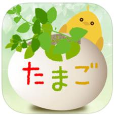 同性愛の出会い系アプリたまご~tamago~