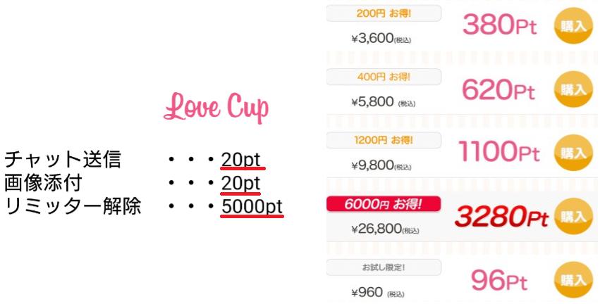 LoveCup 友達・恋人探し 運命の出会いがここにある!料金体系