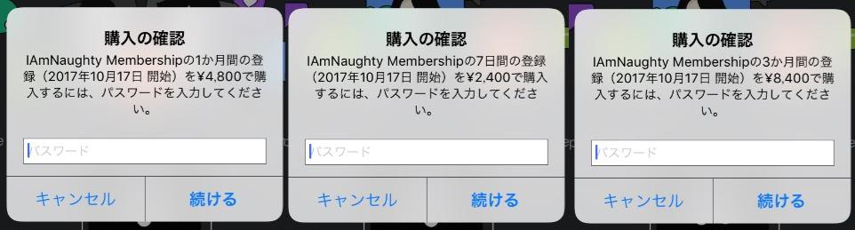 iamnaughty – like and match料金体系