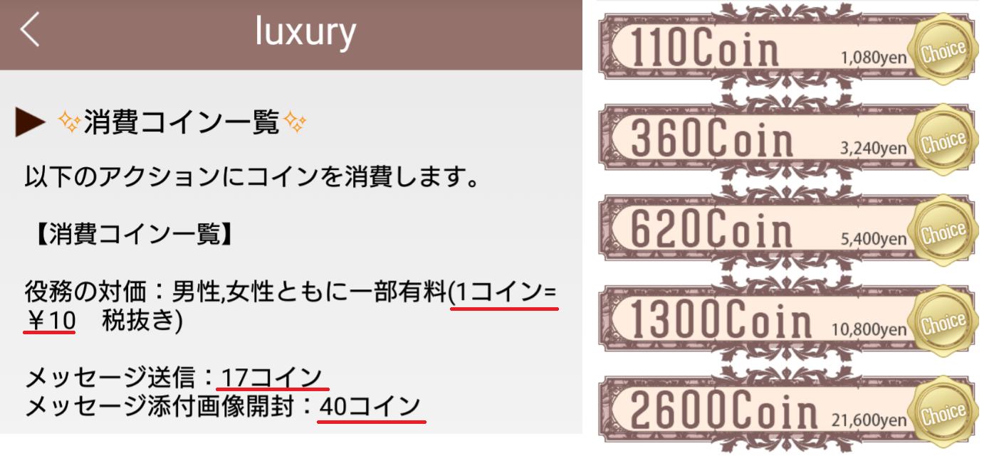 サクラ詐欺出会い系アプリ「Luxury」料金体系