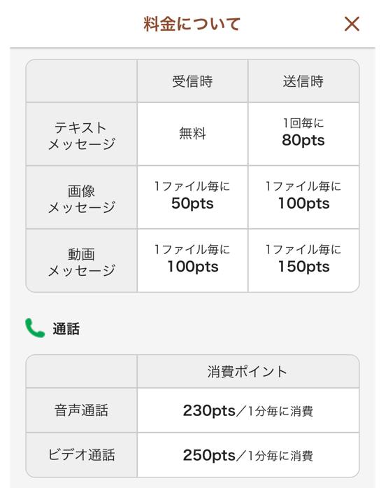ビデオ通話アプリZOOの料金体系